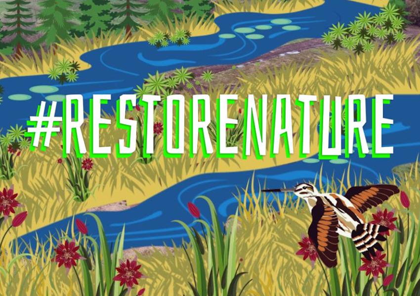 Campanha Restaurar a Natureza